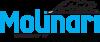 Molinari Cue Tip Medium 48 logo